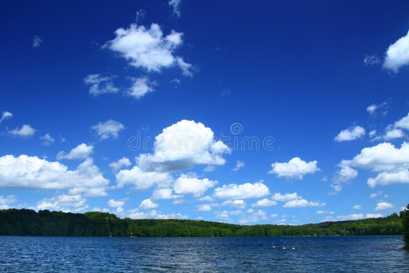 Oever van het meer met boomlijn royalty-vrije stock afbeeldingen