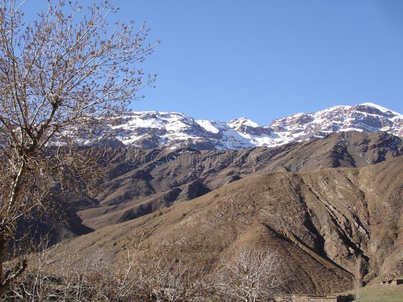 Oezbekistan, Chimgan-gebied, de lente van 2006 royalty-vrije stock foto's