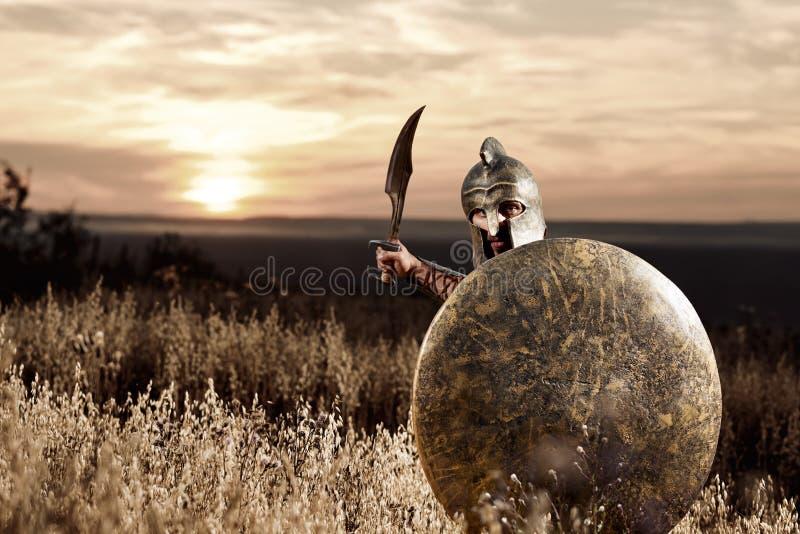 Oförskräckt ung spartansk krigare som poserar i fältet royaltyfri foto