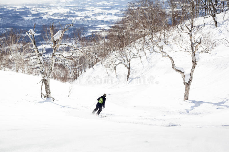 Download Off-Piste Skiing Through Trees Stock Image - Image: 29350523