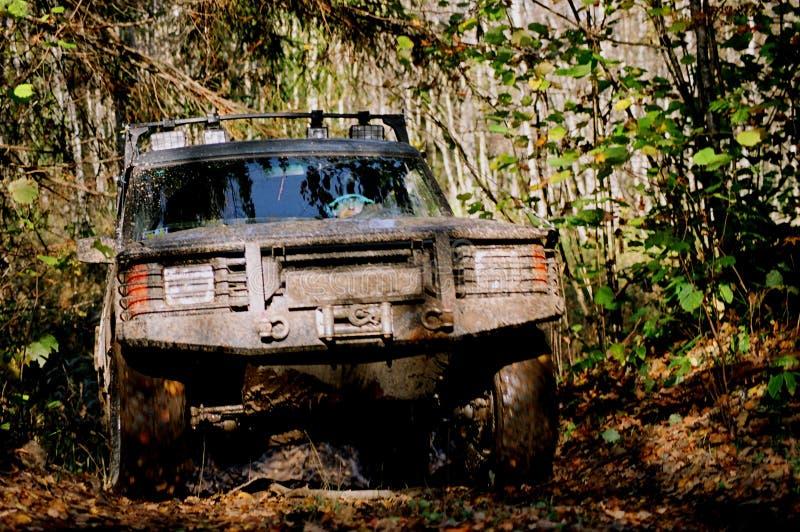 Off-road de herfstreis #3 stock afbeeldingen