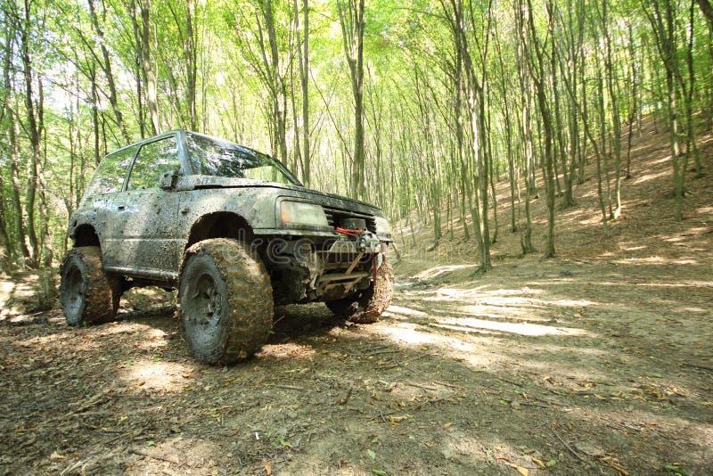 Off-road groot-gereden monstervrachtwagen in modderbos stock fotografie
