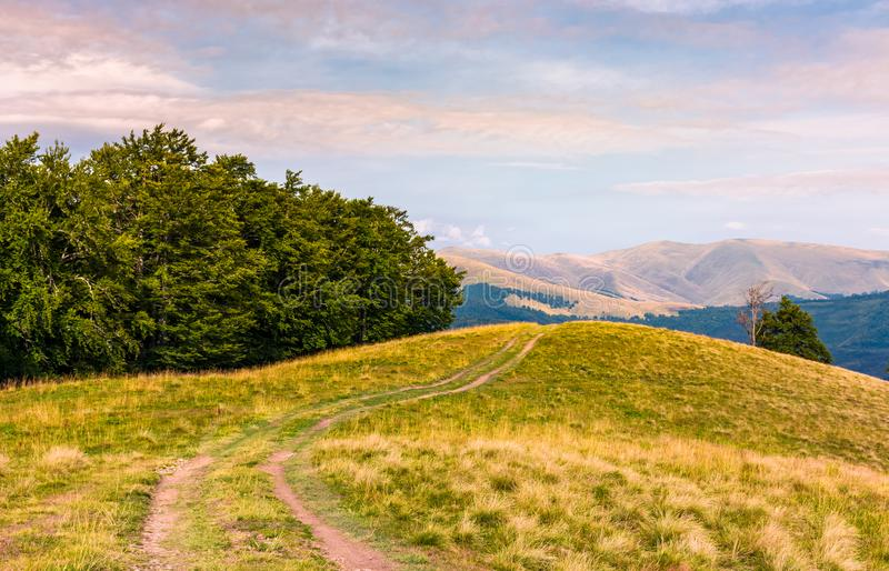 Off road trail through hills of Carpathians stock photos