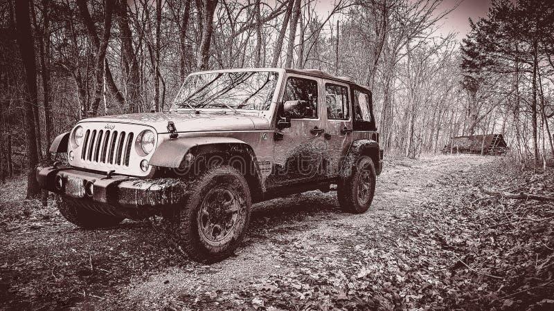 Off-roading dans Jeep Unlimited image libre de droits