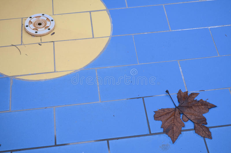 Off-season Swimming Pool Close-up With Leaf Stock Photos