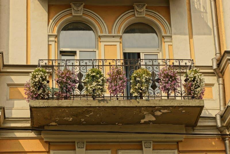 Offener Metallbalkon mit Blumen in den Vasen und in den Fenstern auf der braunen Wand stockfotografie