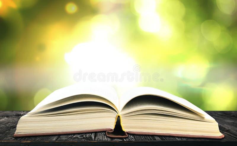 Offenes altes Hardcover-Buch aus Holz vor grünem Hintergrund stockfotos