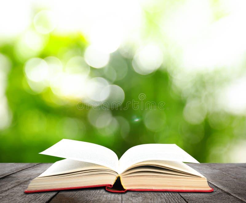 Offenes altes Hardcover-Buch aus Holz vor grünem Hintergrund lizenzfreies stockbild