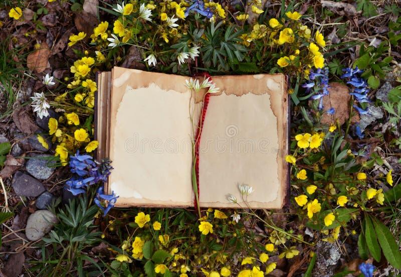 Offenes Buch mit alten schäbigen bages im Gras und in den Blumen stockbild
