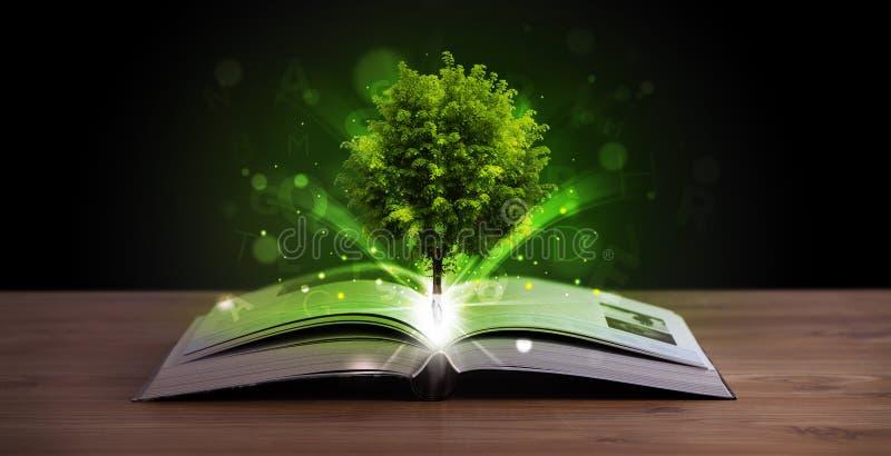 Offenes Buch mit magischem grünem Baum und Strahlen des Lichtes stock abbildung