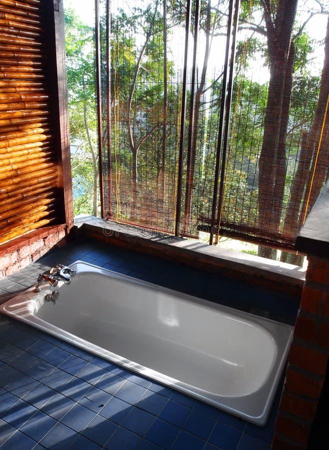 Offenes Konzept des Badezimmers mit Gebirgsszenischer Ansicht stockfoto