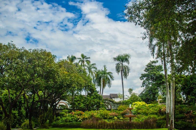 Offentlig grön sommar parkerar trädgården med blå himmel i den molniga dagen Härligt dagljus parkerar offentligt med fältet för g arkivfoton
