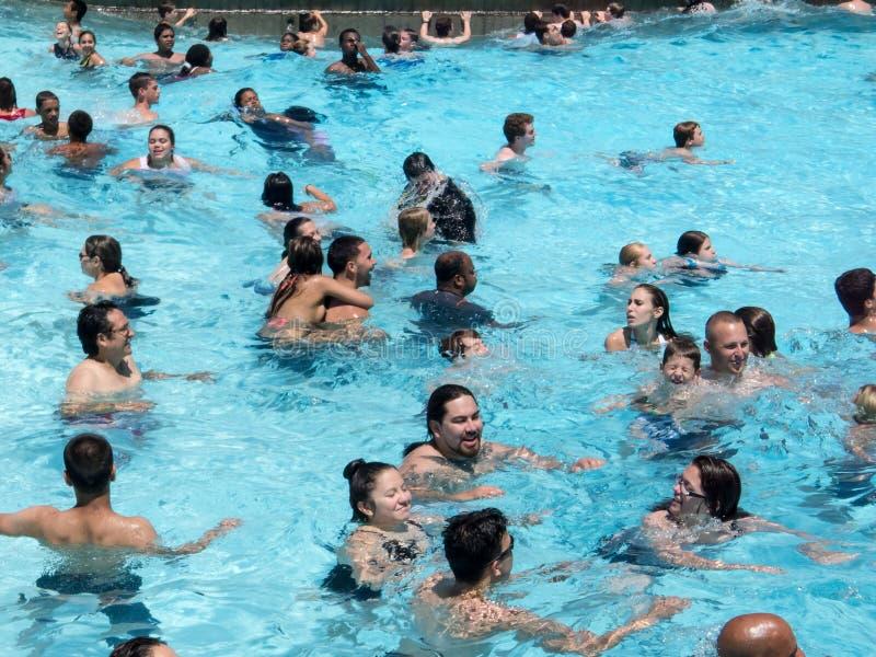 offentlig simning för pöl royaltyfri foto
