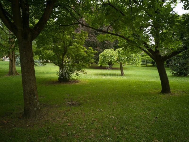 Offentlig trädgård i staden av Toulouse, Frankrike royaltyfri bild