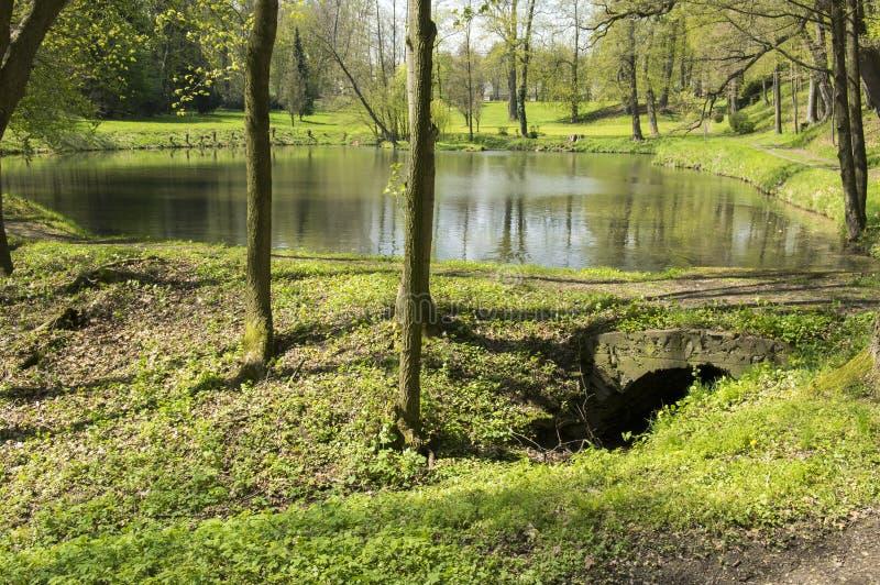 Offentliga trädgårdar i Chotebor med dammet under vårsäsongen, romantisk plats, vattenreflexioner royaltyfria foton