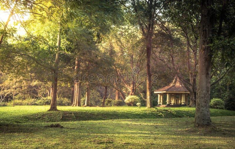 Offentligt parkera landskaplandskapet med gazebosolnedg?ngsolljus i den kungliga tr?dg?rden Peradeniya i Sri Lanka n?rliggande Ka royaltyfri fotografi