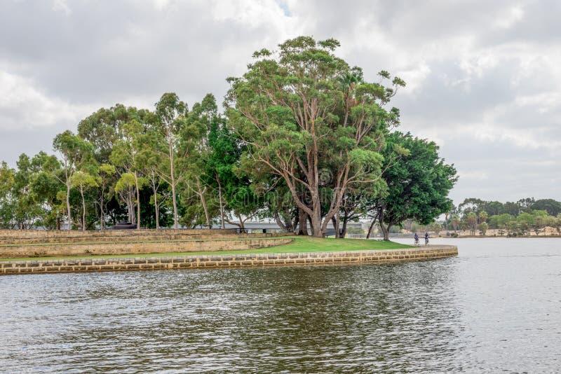 Offentligt parkera med konstgjorda terrasser nära svanfloden i östliga Perth arkivbilder
