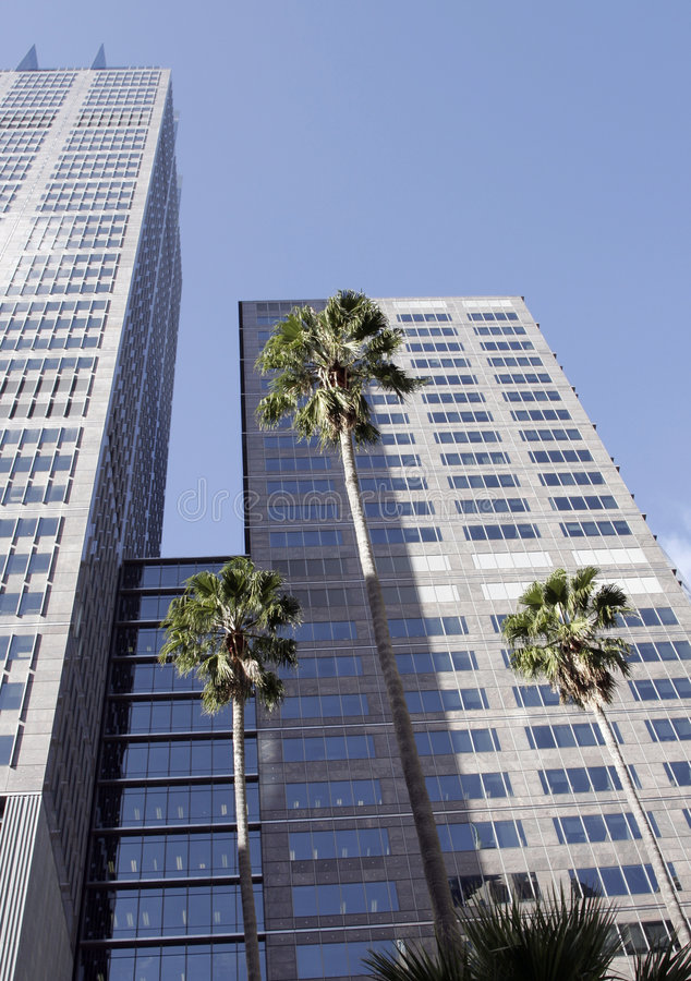 Free Office Building Royalty Free Stock Photos - 2911638