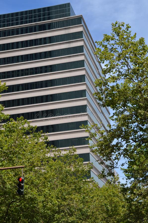Office Building w/ Trees and Traffic Light royalty free stock images