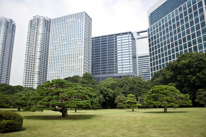 Download Office Buildings Surrounding Japanese Garden Stock Image - Image: 26487483