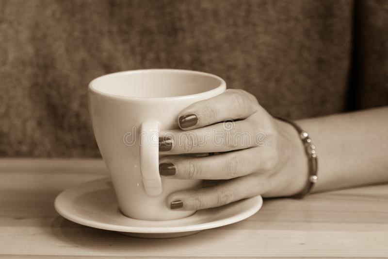 Office coffee break. White cup of coffee in female hands. Warm your hands with a cup of hot drink. Meeting in a cafe. The girl in the coffee shop. Morning coffee stock photography