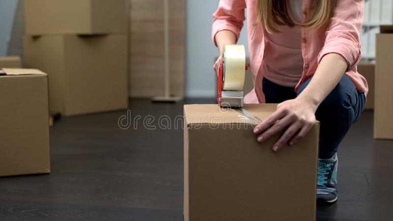 Office employee packing equipment and stuff for removal, business expansion royalty free stock photos
