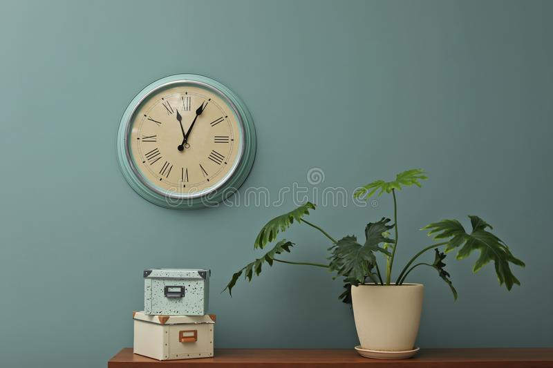 Office interior with houseplant and clock on wall stock photography