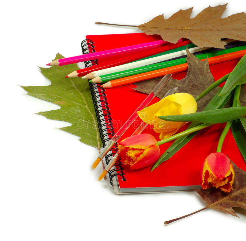 Download Office Supplies And Flowers Stock Photo - Image: 32262766