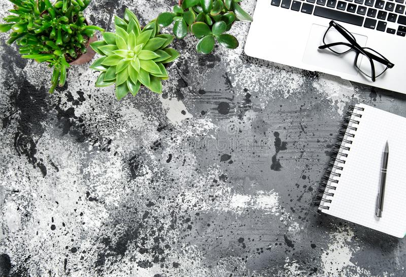 Office table Working place Laptop notebook succulent flat lay royalty free stock photography