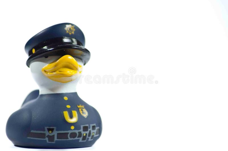 Officer duck stock photo