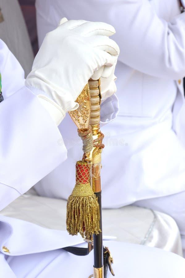 Download Officers sword stock image. Image of danger, bird, golden - 38216169