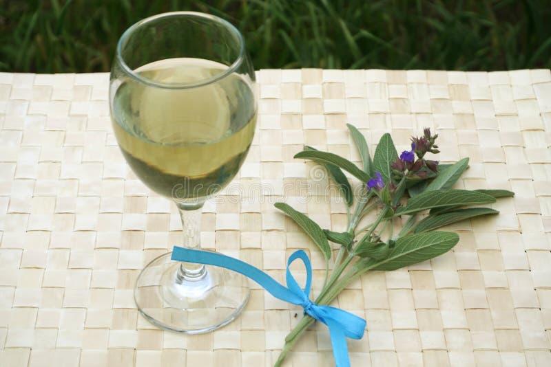 Officinalis сладкий зеленый цвет Salvia и здоровая настойка, напиток трав мудрый стоковые изображения rf