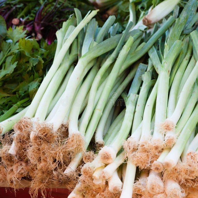 Offre de marché de veggie de pile d'oignons verts photographie stock