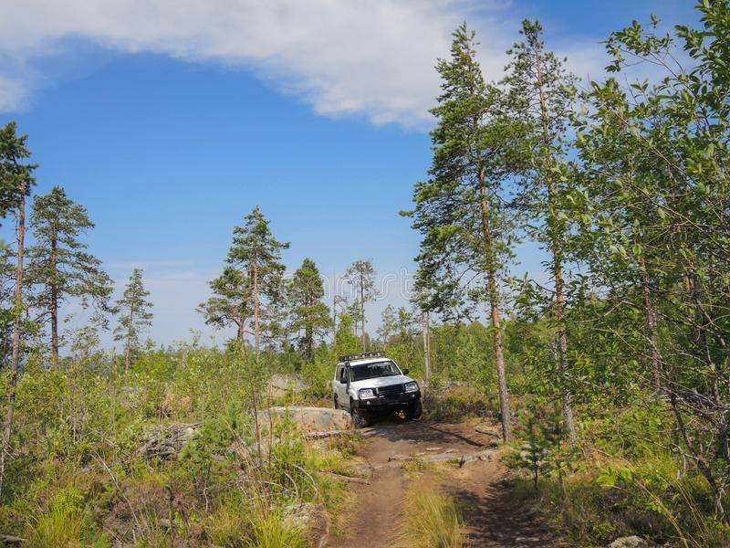 Offroad adventure on Toyota in the forests of Karelia. In summer stock photography