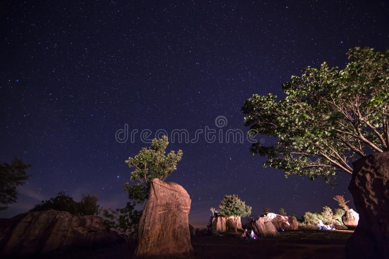 Offroad car among the tree. With spotlight stock images