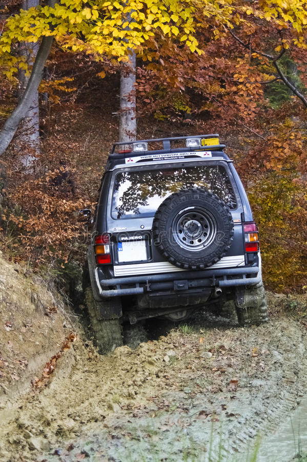 Offroad driving into a forest royalty free stock image