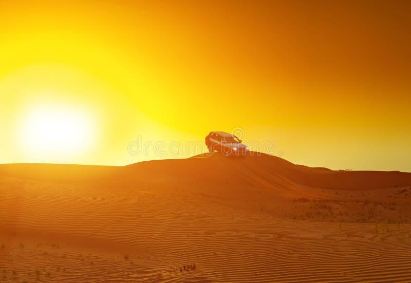 Offroad lastbil- eller suvridningdyn i arabisk öken på solnedgången Offroad har ändrats för att vara oigenkännligt royaltyfri foto