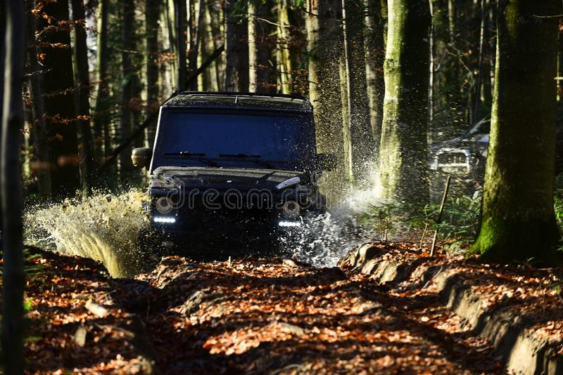 Offroad race on fall nature background. Extreme, challenge and 4x4 vehicle concept Car racing in autumn forest. SUV or. Offroad race on fall nature background royalty free stock image