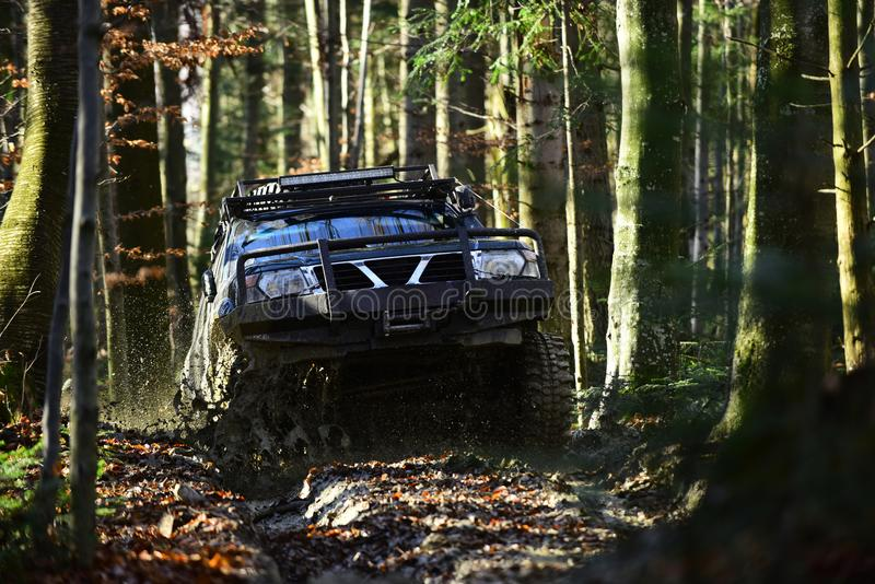 Offroad race on fall nature background. Rallying, competition and four wheel drive concept. Motor racing in autumn. Forest. Sport utility vehicle or SUV royalty free stock photos