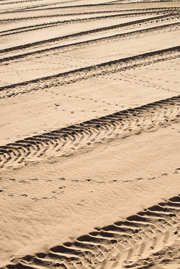 Offroad tracks royalty free stock image