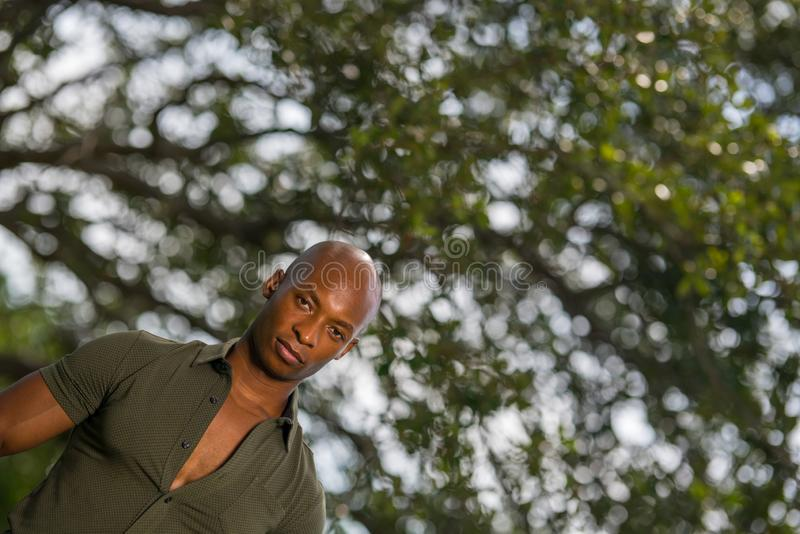 Offset photo of a handsome young black man posing with green trees royalty free stock photos