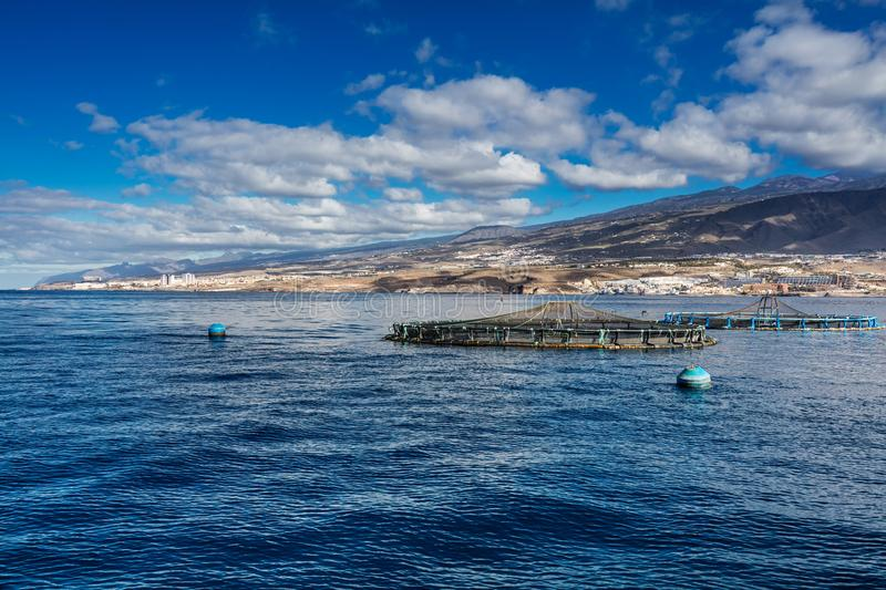 Offshore fish farms clustered around the west coast of Tenerife, Spain. Sea bass and common bream are cultured in these breeding c. Ages. This form of royalty free stock photography