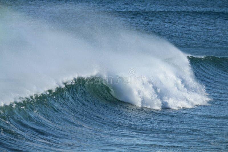 Offshorewelle mit Spray im Pazifischen Ozean stockbild