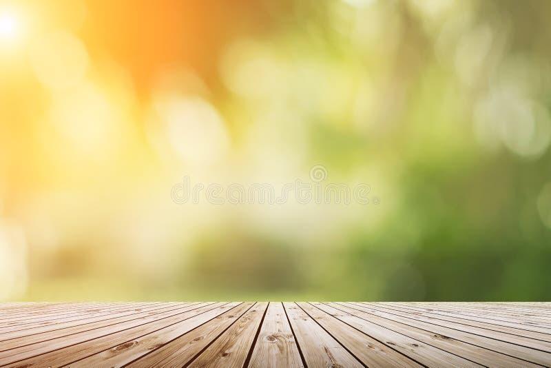 Offuschi il bokeh verde della natura con la luce del sole sullo spazio della copia vuoto, vecchio fotografie stock libere da diritti