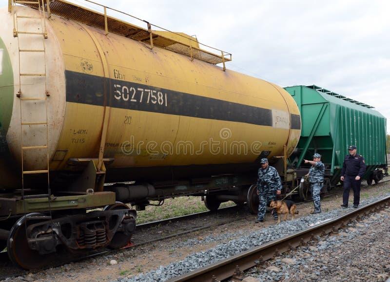 Oficery oddziałowy ochrona patrol terytorium stacja kolejowa z policjantem fotografia royalty free