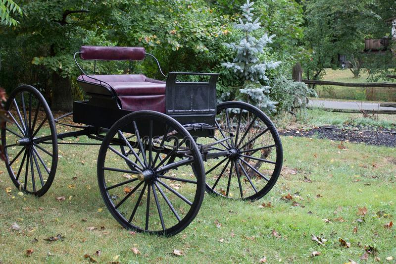 Antique Amish Buggy Used as a Unique Landscape Artifact royalty free stock photo