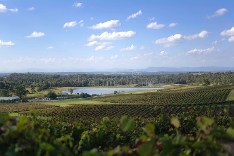 Myśliwy dolina Vista zdjęcie stock