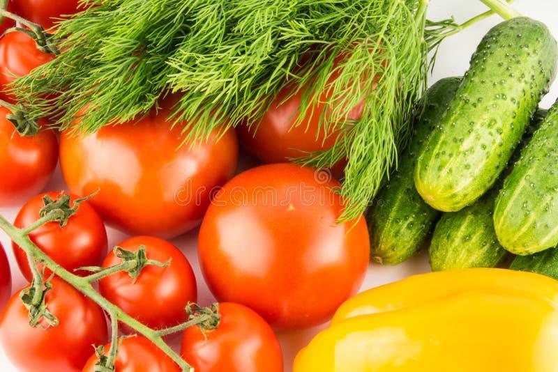 Ogórek, pomidor, pieprz i koper odizolowywający na białym tła zakończeniu up, zdjęcia royalty free