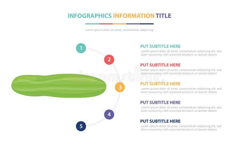 Ogórkowy infographic szablonu pojęcie z pięć punktami spisuje i różnorodny kolor z czystym nowożytnym białym tłem - wektor ilustracji