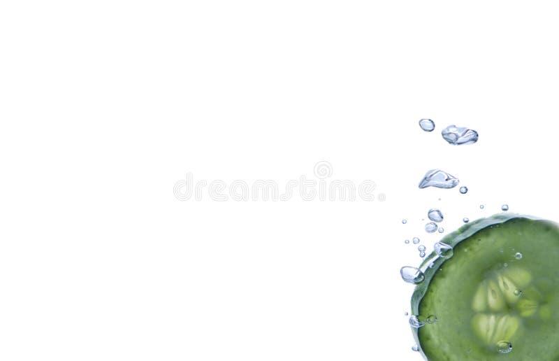 Ogórkowy plasterek zdjęcie stock
